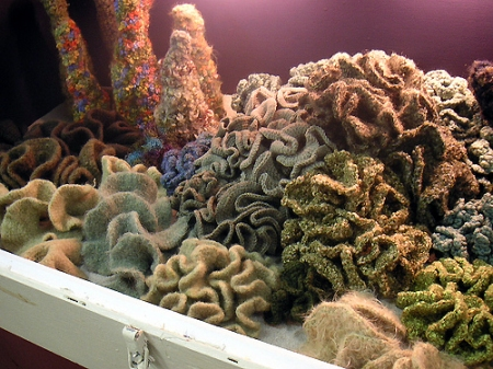 Crochet hyperbolic kelp. Photo: Institute for Figuring.