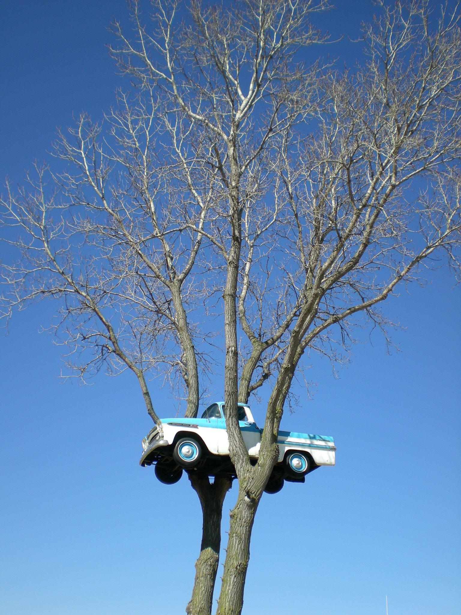Odd Wisconsin Attractions Clinton S Truck In The Tree Portal Wisconsin Blog