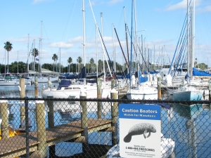 The Harbor in St. Petersburg, FL